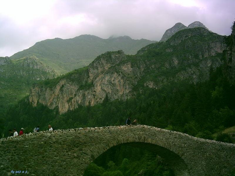 bridge in the valley of bujaruelo