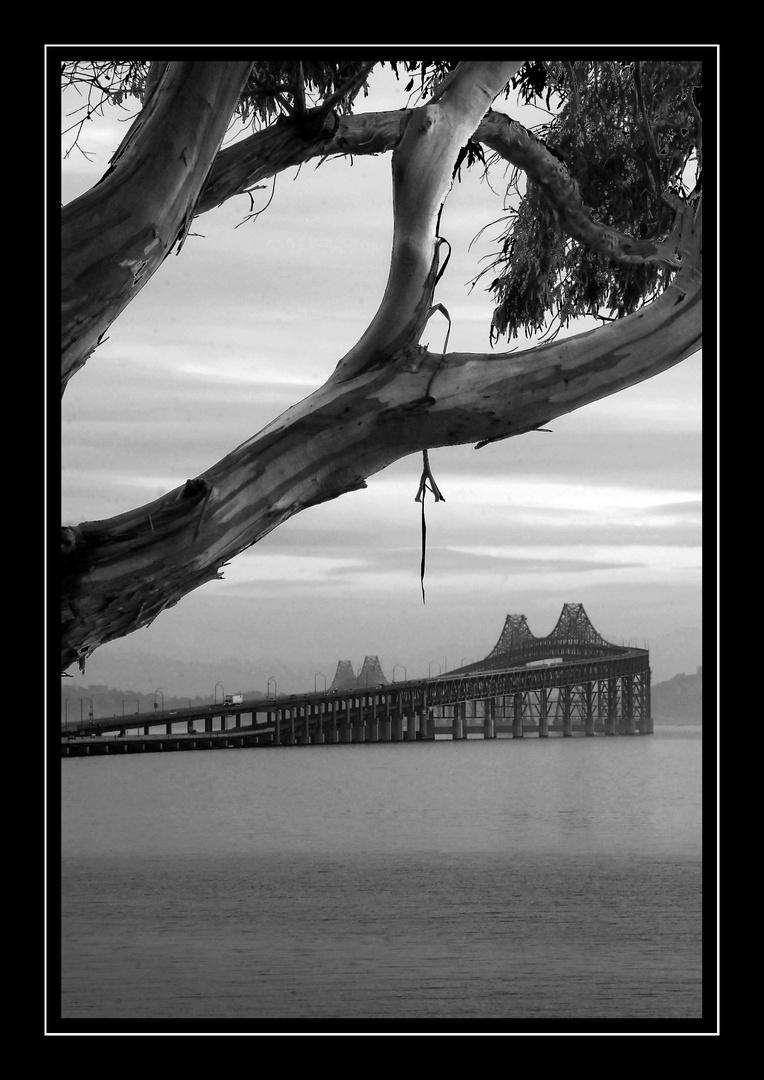 Bridge to Better Days