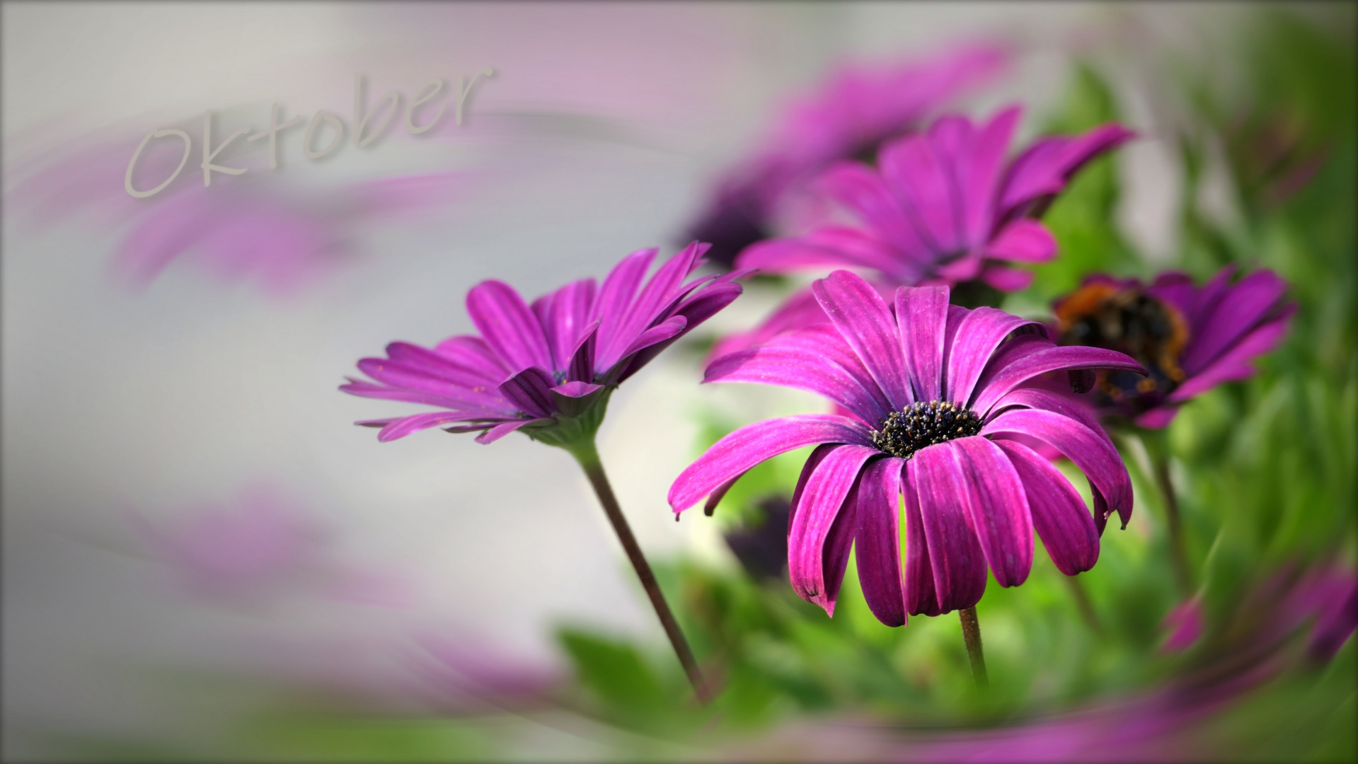 ...  bright colors of autumn