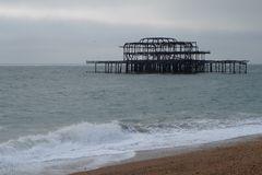 Brighton Pear