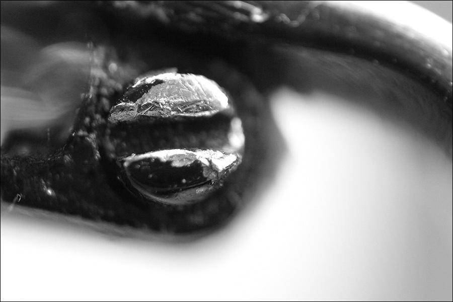 Brillendetail -> Fixierschraube