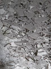 ..Bris de glace (2)