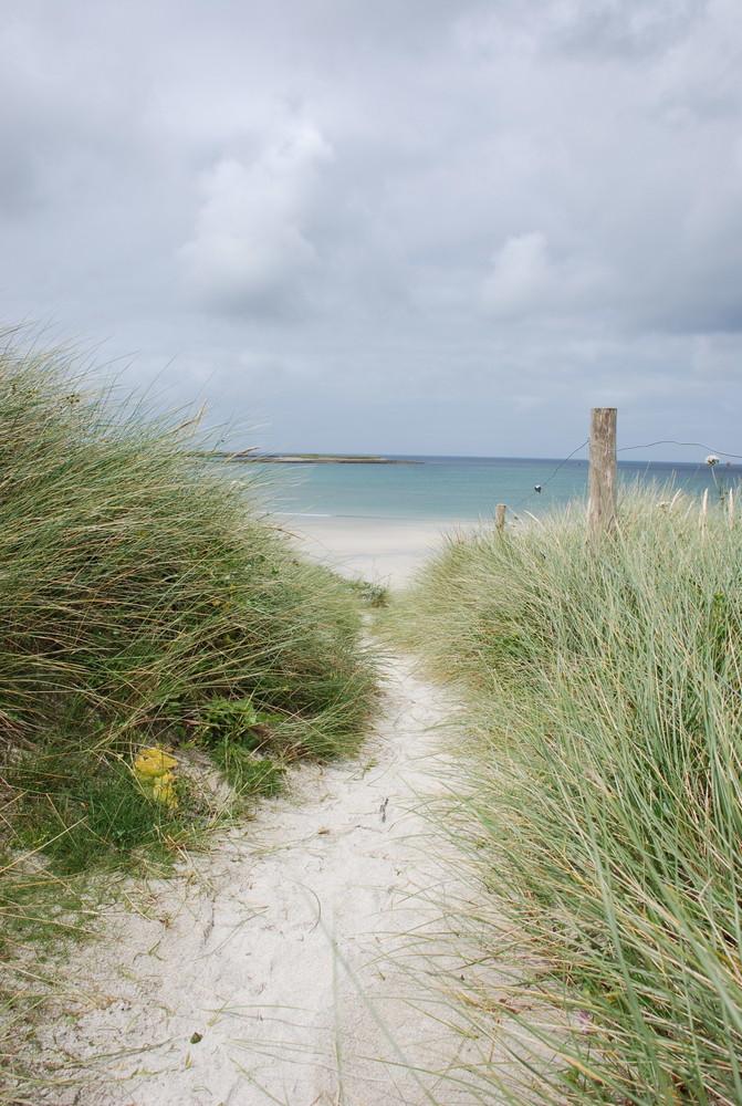 britanny seashore summer 07