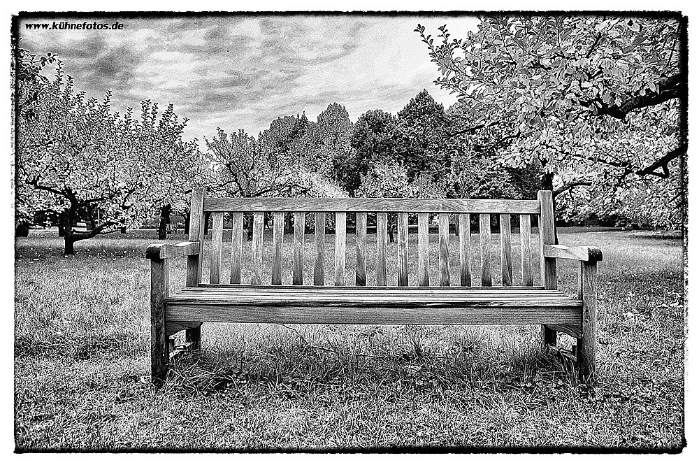 Britzer Garten 4