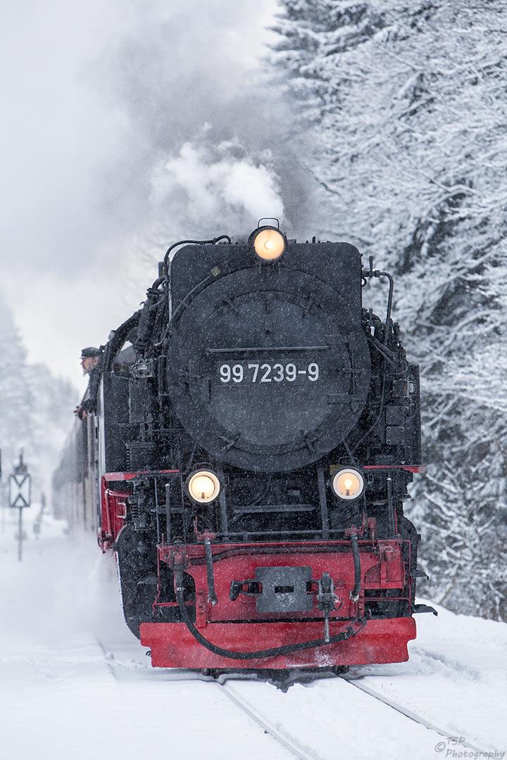 Brockenbahn 5