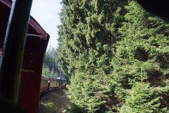 """Brockenbahn """"Fahrt durch den Wald"""""""
