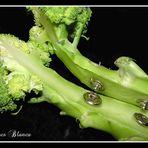 Brocoli y broches