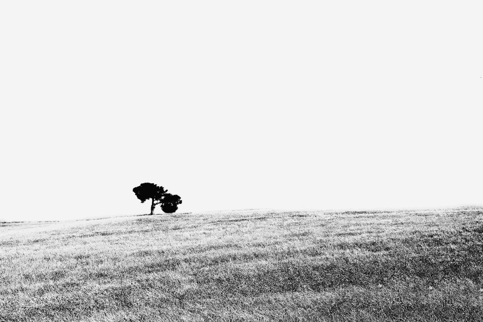 Broken horizon