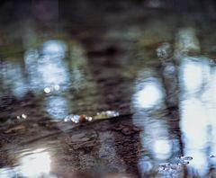 Bronnwasser - Traum