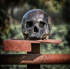Bronzeschädel beisst auf Eisen