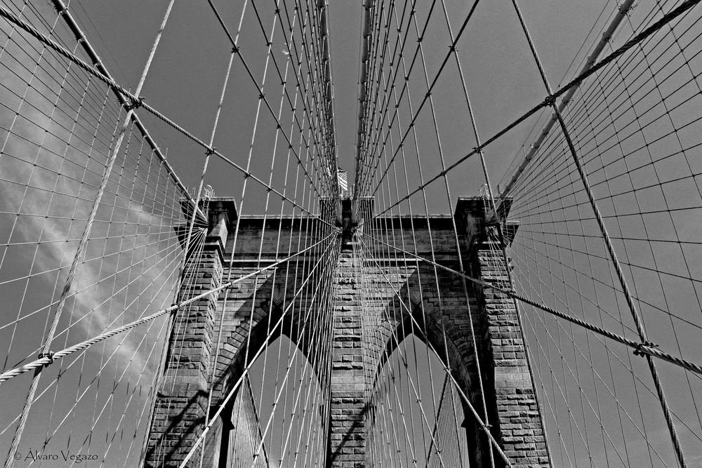 Brooklyn b&n