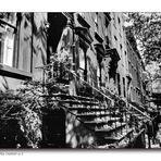 Brooklyn Heights Summer - No. 2