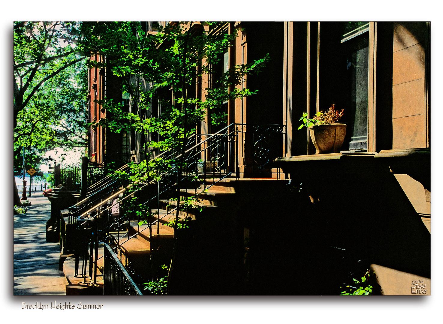 Brooklyn Heights Summer - No.1