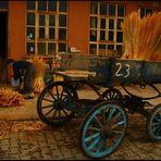 Broom Master 3-Edirne-Turkey