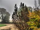 Brouillard dans la vallée de la Baïse