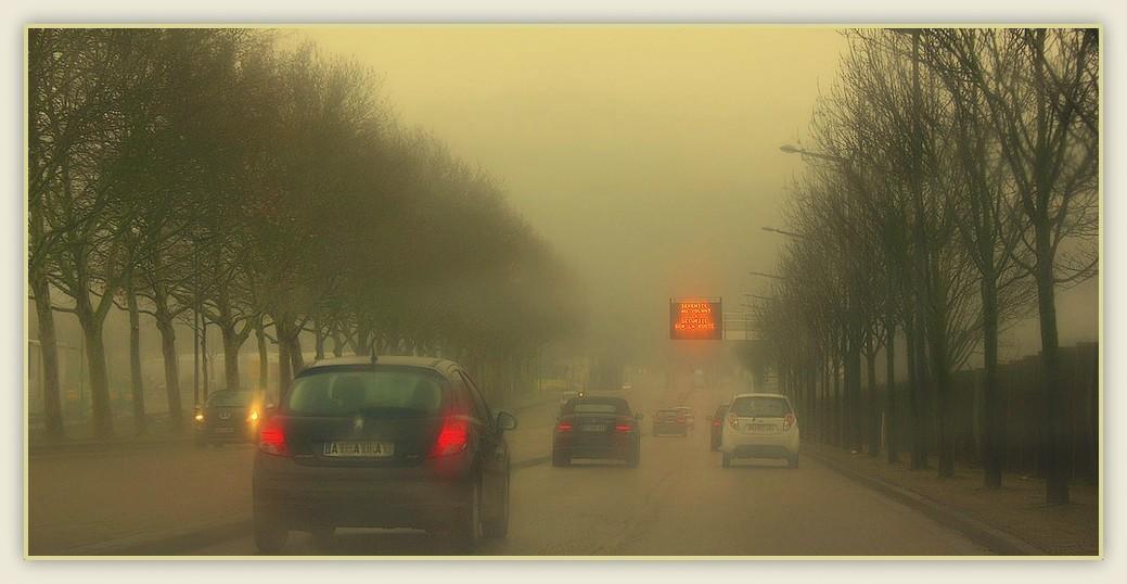 Brouillard sur la route