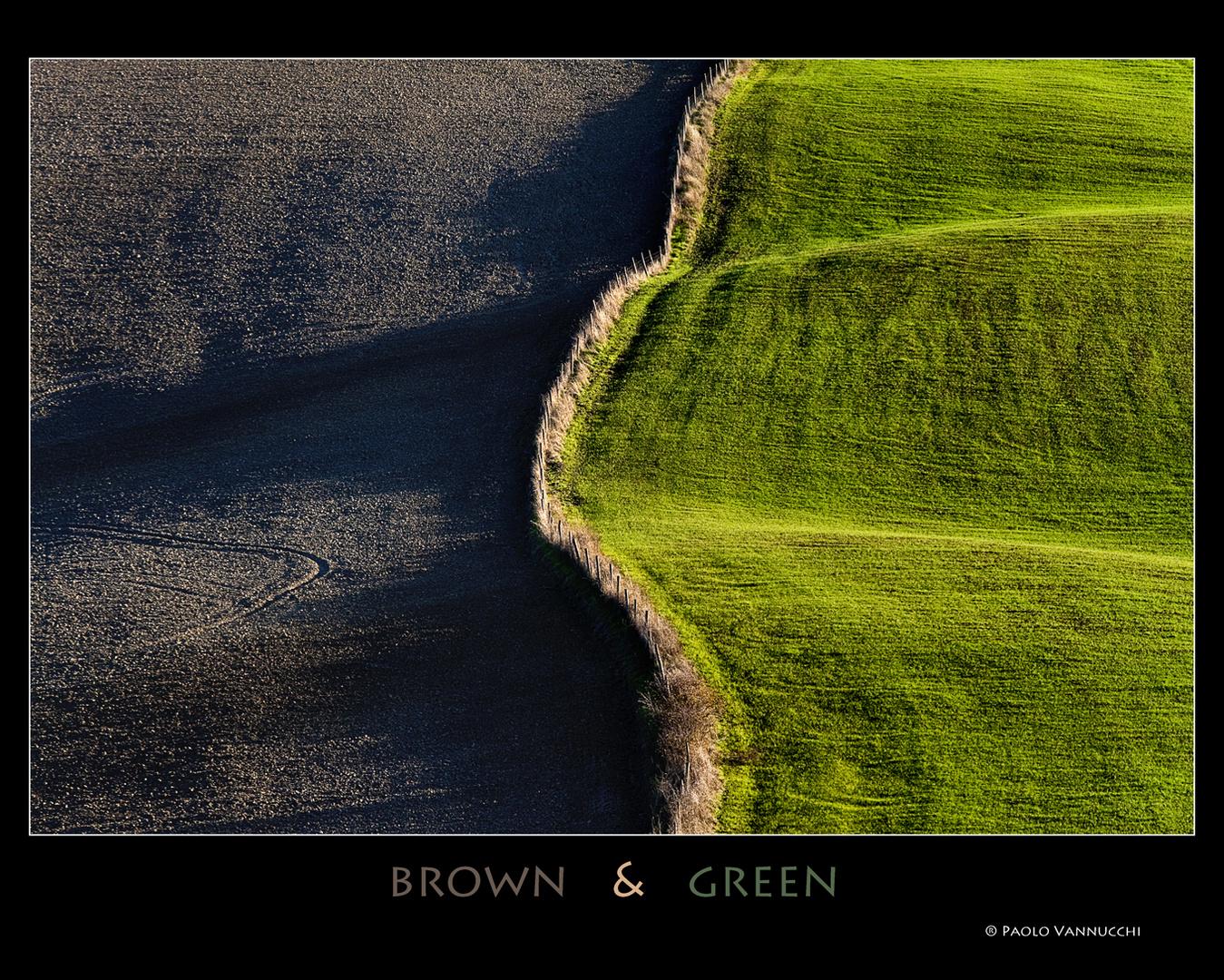 brown & green...Terre senesi...