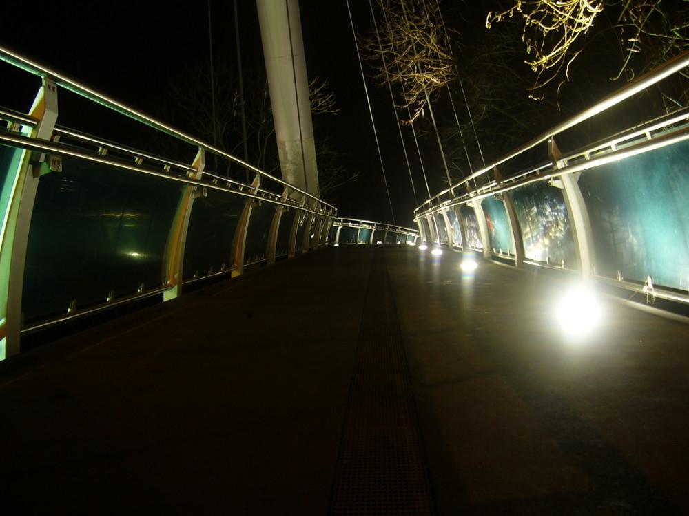 *Brücke bei Nacht*