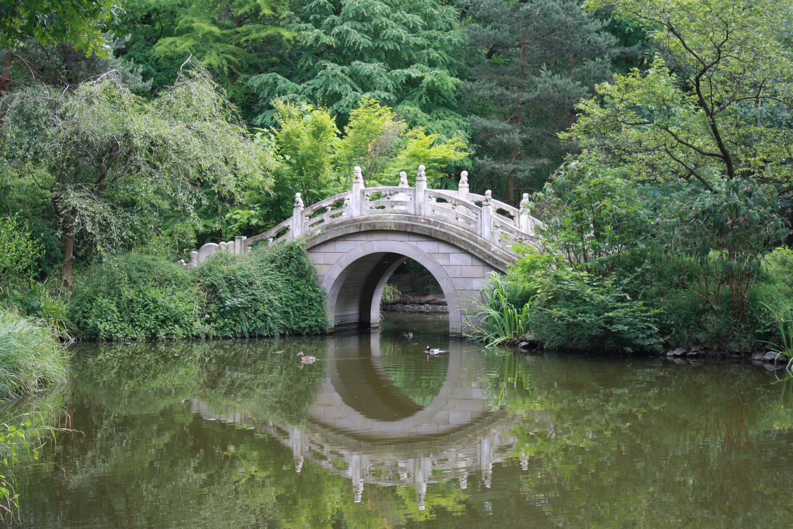 Brücke des Lebens im Chinesischen Garten Foto & Bild | sonstiges ...