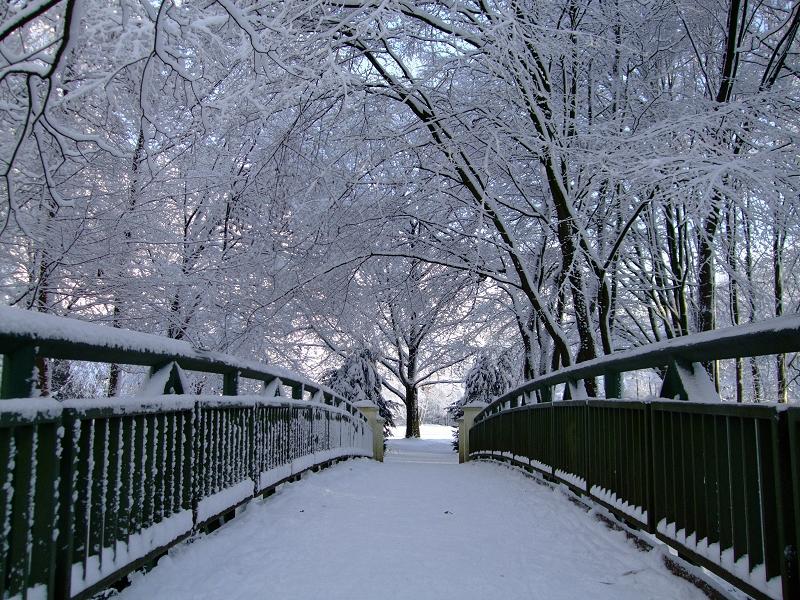 br cke im schnee foto bild landschaft garten parklandschaften natur bilder auf. Black Bedroom Furniture Sets. Home Design Ideas