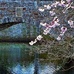 Brücke in Essen-Kettwig, März 2008
