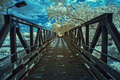 Brücke in Preten