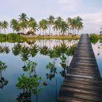 Brücke ins Paradies
