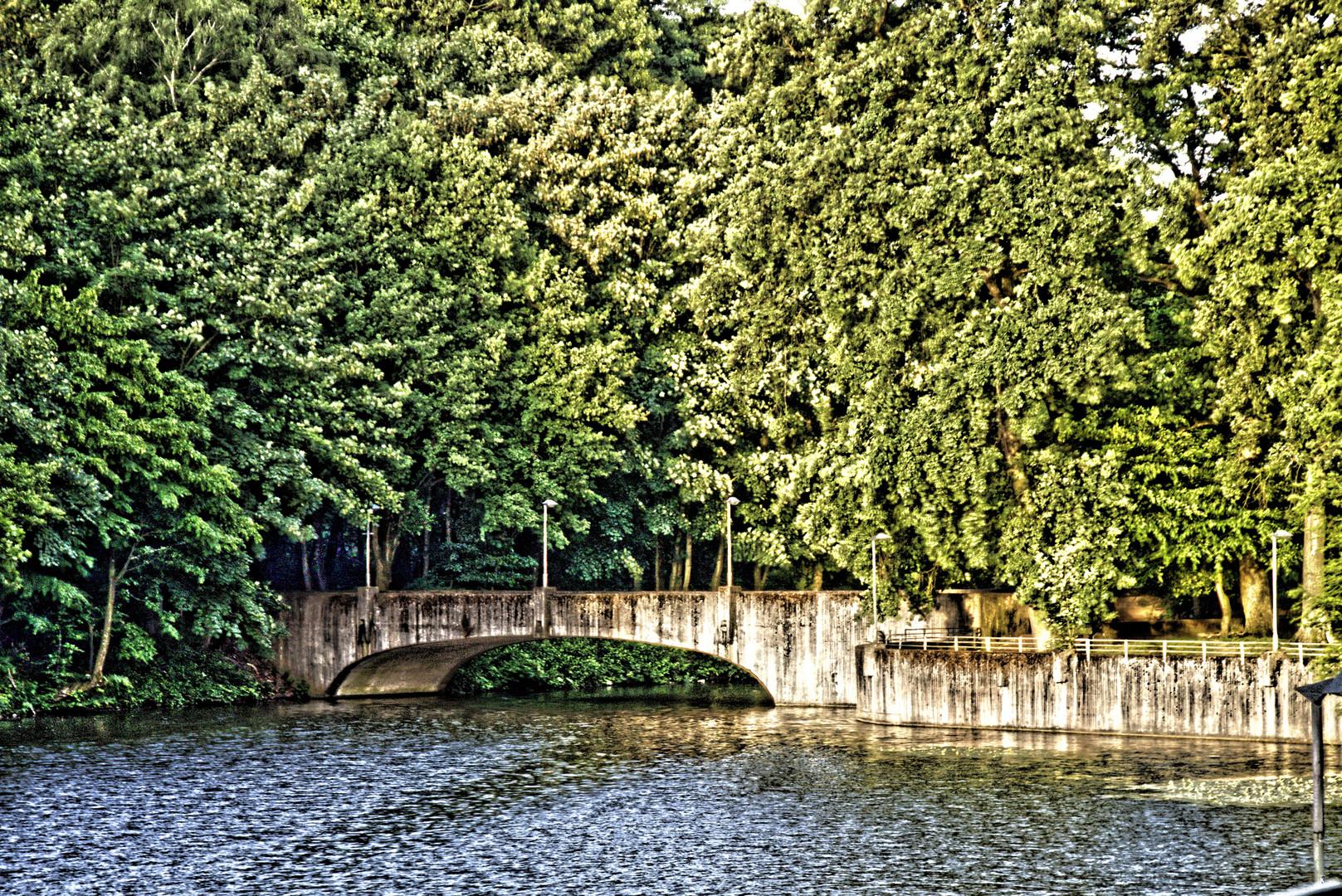 Brücke mit Grün