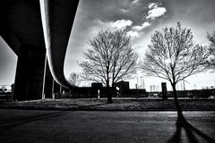 Brücke und Bäume