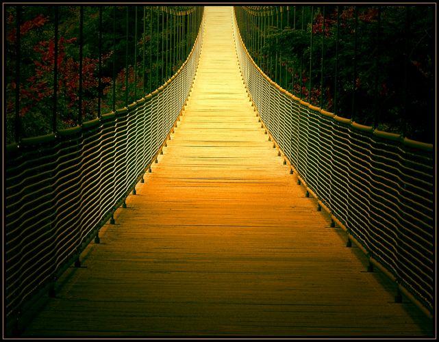 Brücke zum Licht