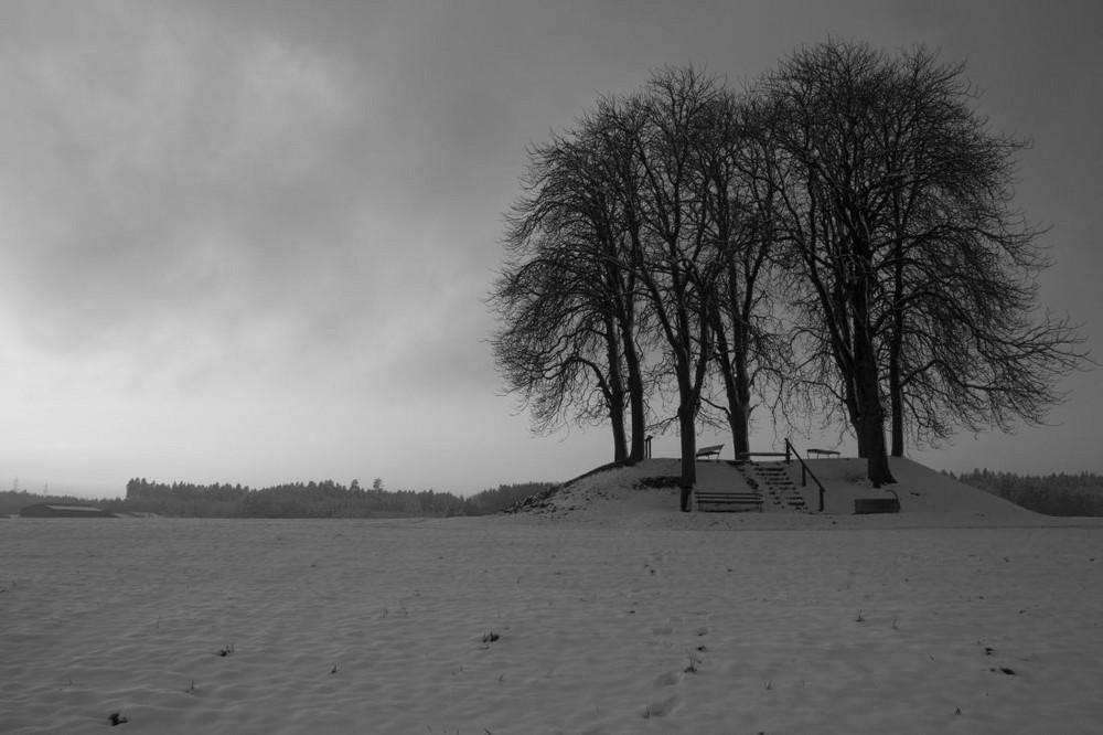 Brütten im Winter