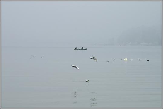 Brume sur le lac du Bourget AIX LES BAINS .SAVOIE .