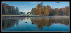 Brume sur l'étang de la Longue Queue