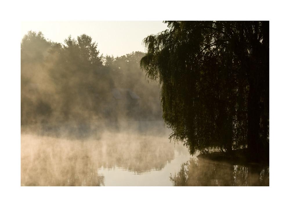 Brume un matin d'automne