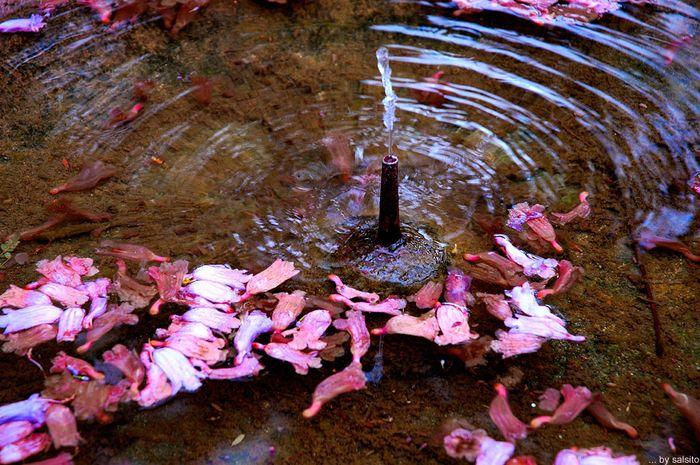 Brunnen im Garten des Alcazar