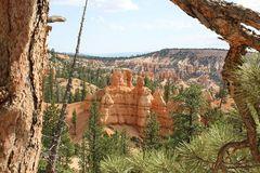 Bryce Canyon - Am Navajo Loop Trail