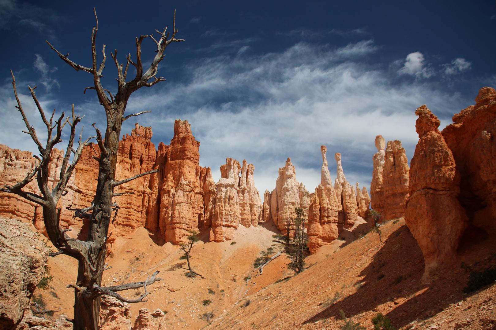 Bryce Canyon NP, USA