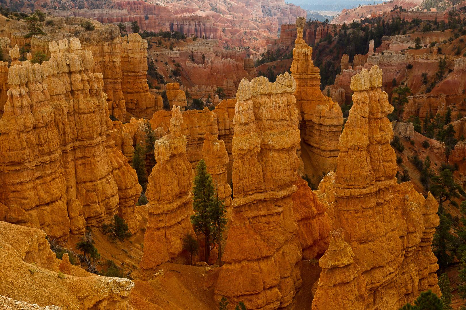 Bryce Canyon NP V
