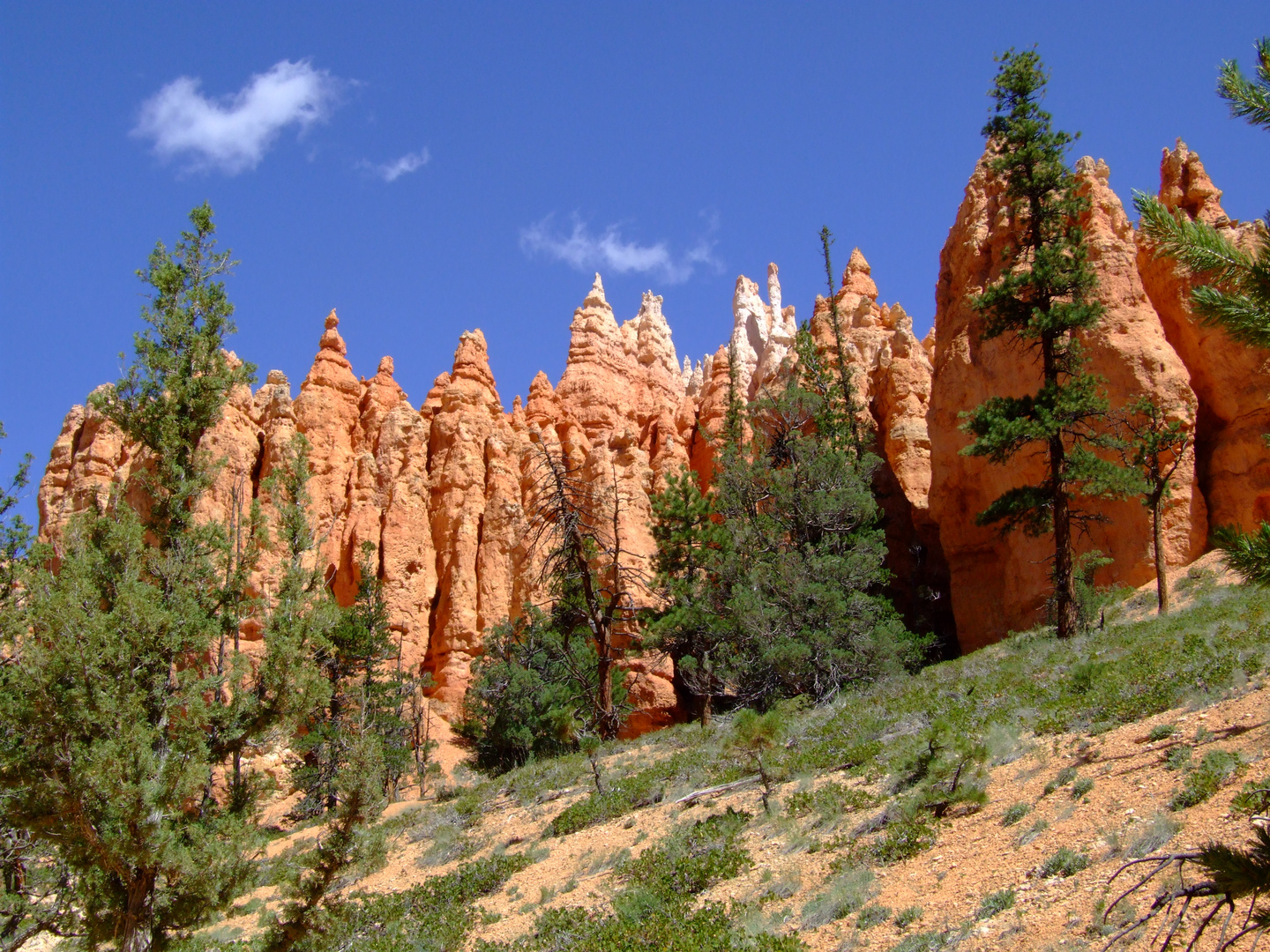 Bryce Canyon - Red, Green and Blue