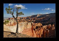 [ Bryce Canyon Sunset ]