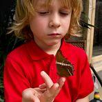 Bub mit Schmetterling!