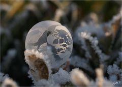 ...bubbles...