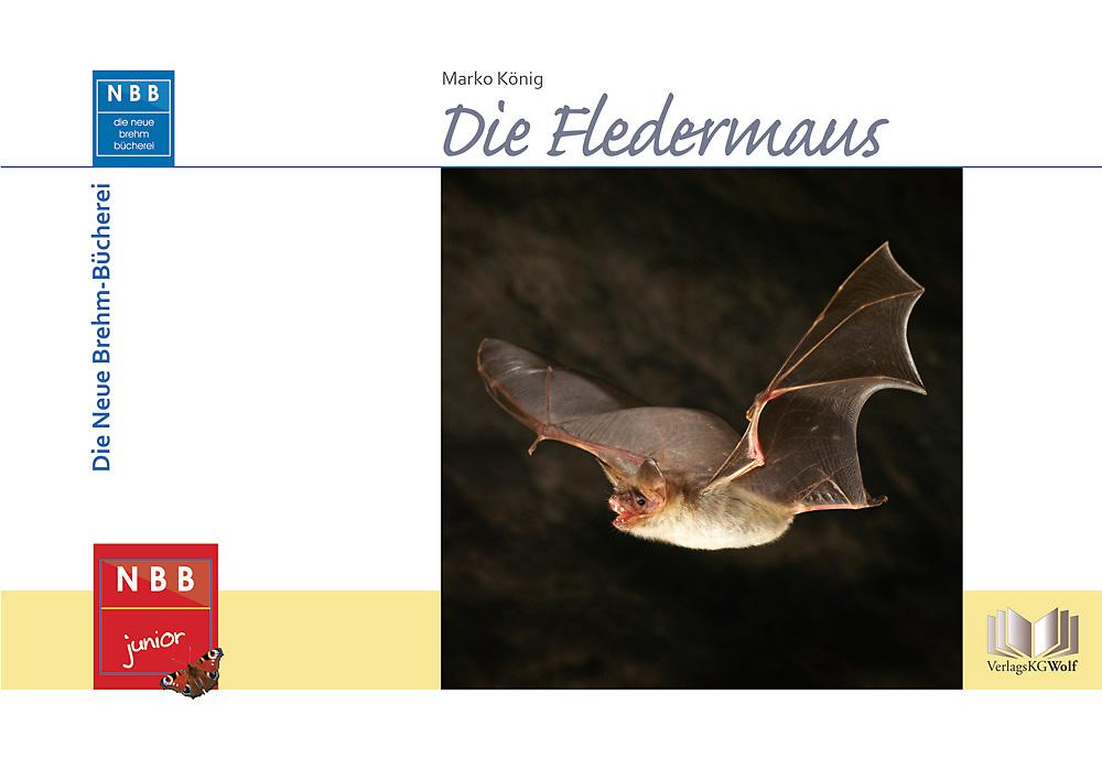 Buch: Die Fledermaus