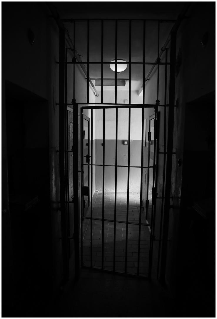 Buchenwald  2018...010