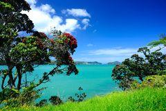 Bucht vor Coromandel NZL