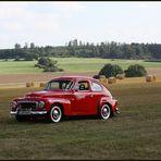 Buckel-Volvo