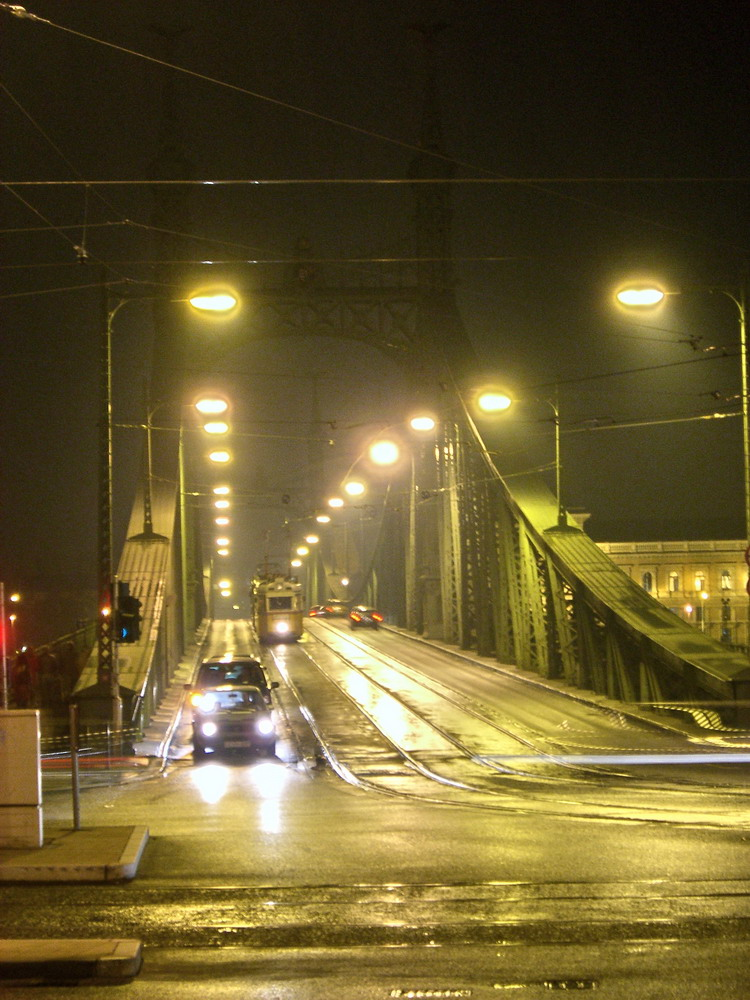 Budapest - Feiheitsrbrücke