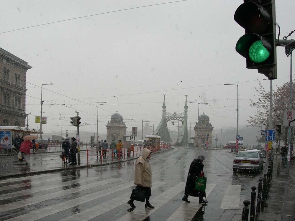 Budapest, Freiheitsbrücke im November