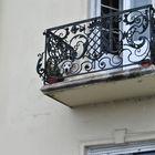 Budapest, un cane sul balcone.