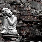 buddha bei die fisch